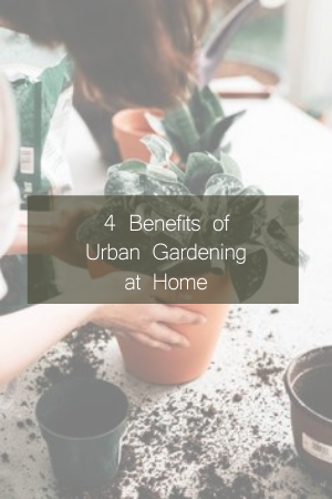 4-Benefits-of-Urban-Gardening-at-Home
