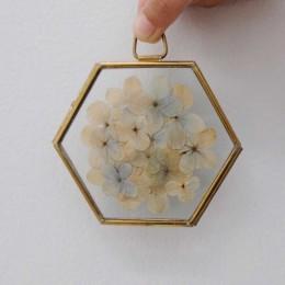 Hydrangea-Flower-Only