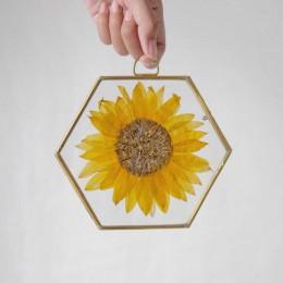 Sunflower-Flower-Only