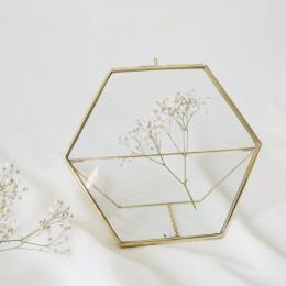 Hexa-Standing-Frame